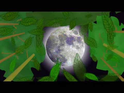 Hide And Go Seek With The Moon | Eric Herman