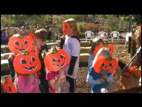 Pumpkins, Beware! | Steve Blunt