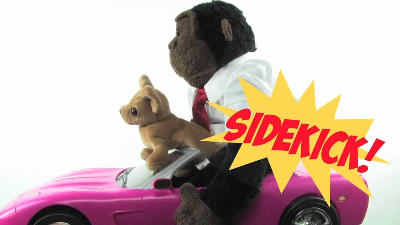 Sidekick | Recess Monkey