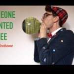 Someone Planted a Tree | Mr. Palindrome