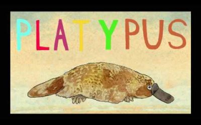 Platypus | Key Wilde & Mr. Clarke