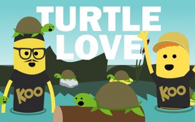 Turtle Love (ft. Scratch Garden) · Koo Koo Kanga Roo